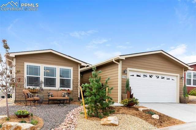 7791 Whiptail Point, Colorado Springs, CO 80922 (#3038424) :: 8z Real Estate