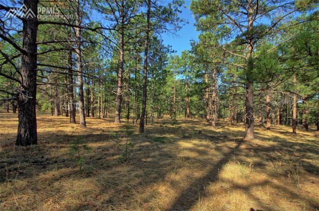 3825 Wavy Oak Drive, Colorado Springs, CO 80908 (#3040810) :: 8z Real Estate