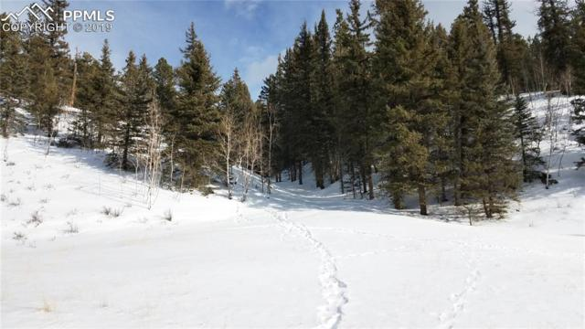 1676 Pathfinder Road, Florissant, CO 80816 (#3041830) :: Tommy Daly Home Team