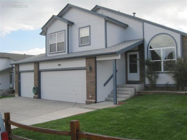 983 White Stone Way, Fountain, CO 80817 (#3046974) :: Action Team Realty