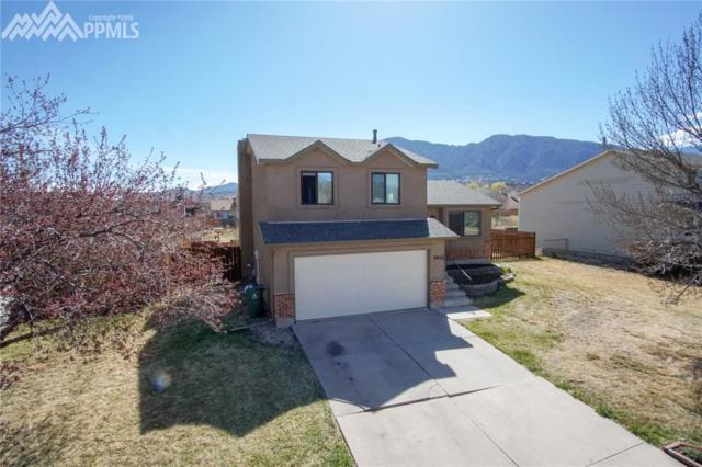 3952 Red Cedar Drive, Colorado Springs, CO 80906 (#3050291) :: Jason Daniels & Associates at RE/MAX Millennium