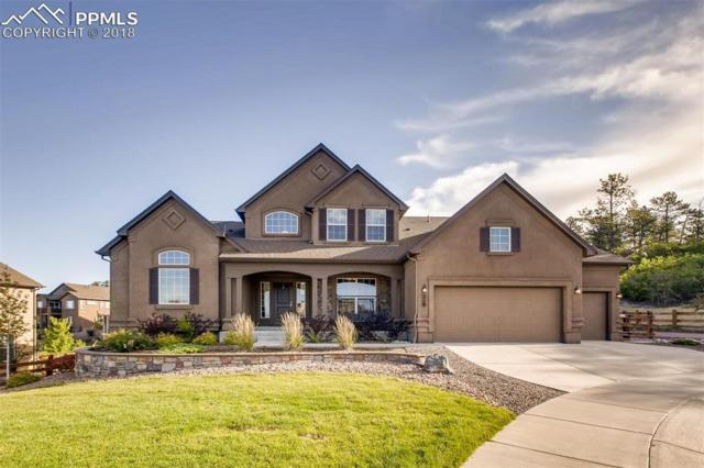 216 Kettle Valley Way, Monument, CO 80132 (#3050692) :: The Kibler Group