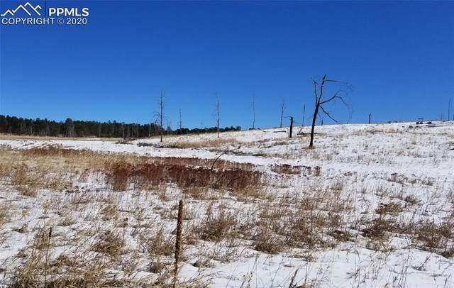 13265 Herring Road, Colorado Springs, CO 80908 (#3051148) :: The Treasure Davis Team