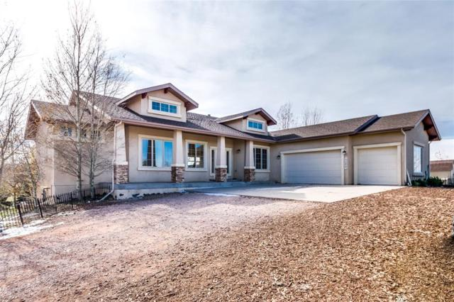 14610 Basin Drive, Colorado Springs, CO 80908 (#3053935) :: 8z Real Estate