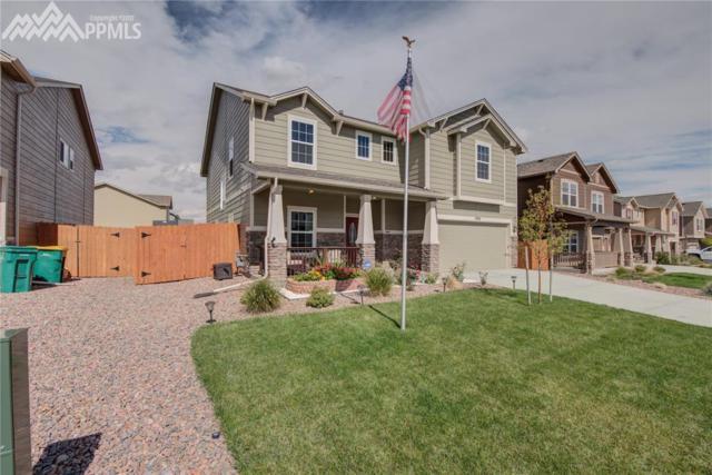 7532 Calm Oasis Place, Colorado Springs, CO 80922 (#3058628) :: 8z Real Estate
