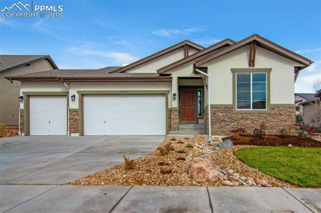 12465 Cloudy Bay Drive, Colorado Springs, CO 80921 (#3059943) :: The Hunstiger Team