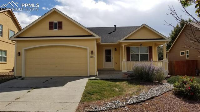 7445 Wrangler Ridge Drive, Colorado Springs, CO 80923 (#3067954) :: The Treasure Davis Team