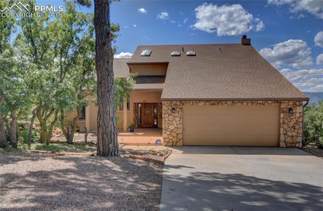 923 Tari Drive, Colorado Springs, CO 80921 (#3068317) :: Jason Daniels & Associates at RE/MAX Millennium