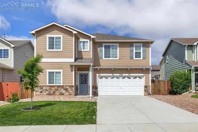 2024 Reed Grass Way, Colorado Springs, CO 80915 (#3069195) :: The Hunstiger Team