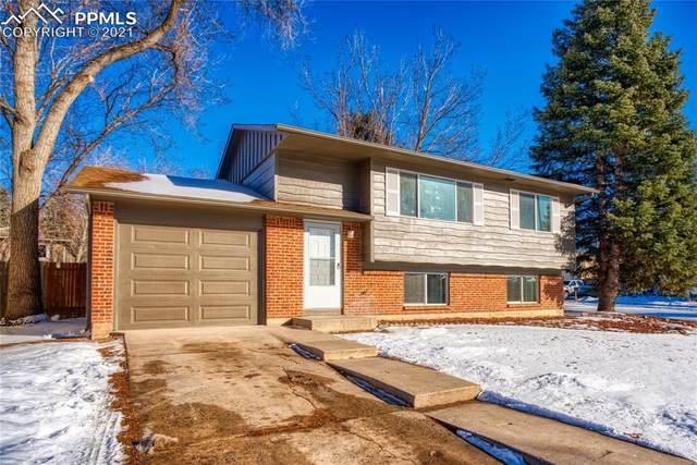 4503 Bella Drive, Colorado Springs, CO 80918 (#3070631) :: Realty ONE Group Five Star