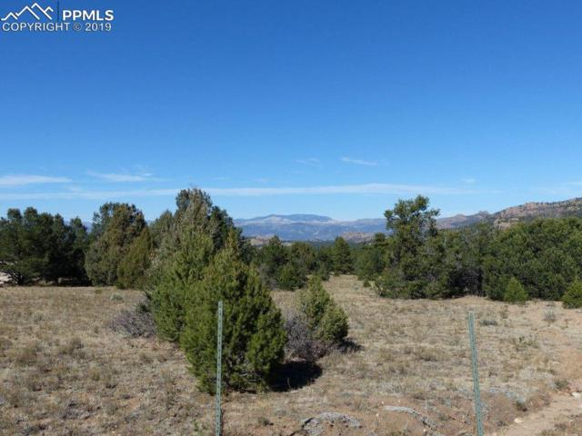 1845 Palmer Road, Cotopaxi, CO 81223 (#3077515) :: Jason Daniels & Associates at RE/MAX Millennium