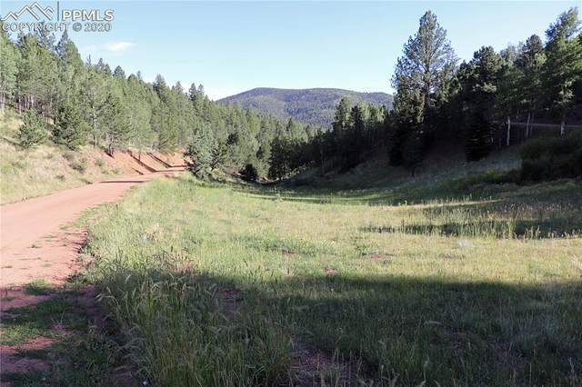 185 Valley Road, Divide, CO 80814 (#3077727) :: The Kibler Group