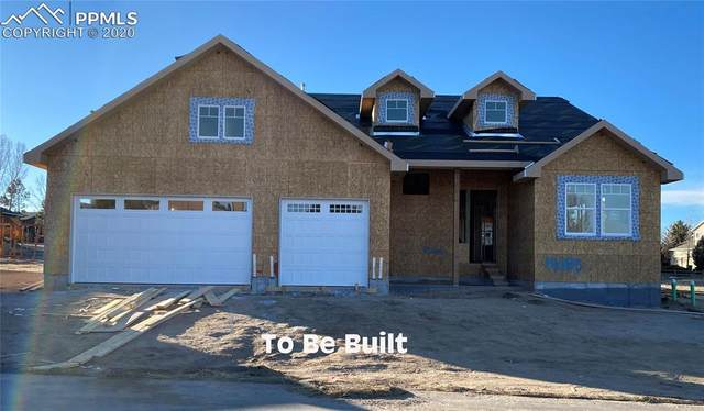14124 Stone Eagle Place, Colorado Springs, CO 80921 (#3079094) :: Tommy Daly Home Team