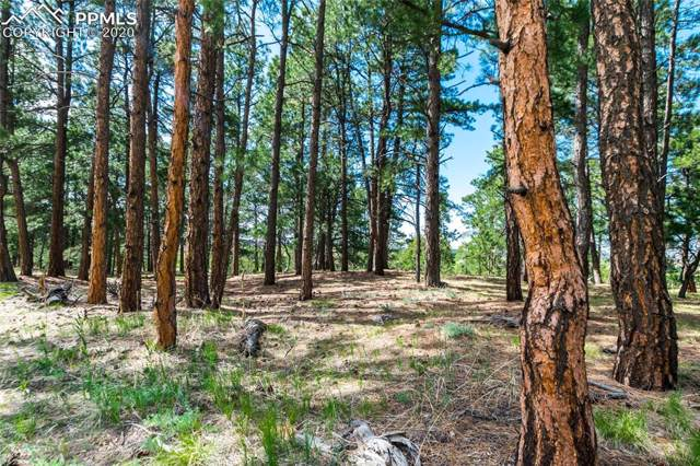 19125 Hilltop Pines Path, Monument, CO 80132 (#3079215) :: CC Signature Group