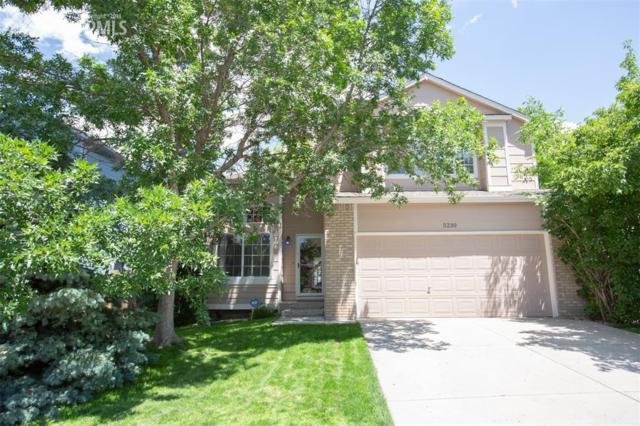 5230 Paradox Drive, Colorado Springs, CO 80923 (#3080033) :: 8z Real Estate