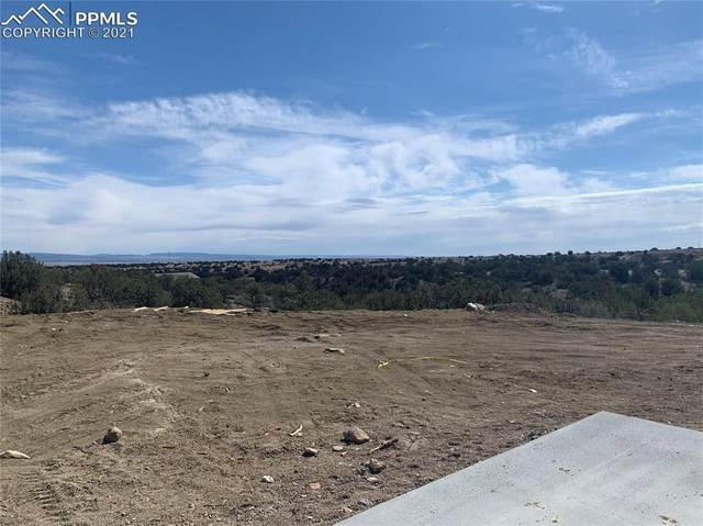 100 Hideaway Trail, Rockvale, CO 81244 (#3085227) :: The Harling Team @ HomeSmart