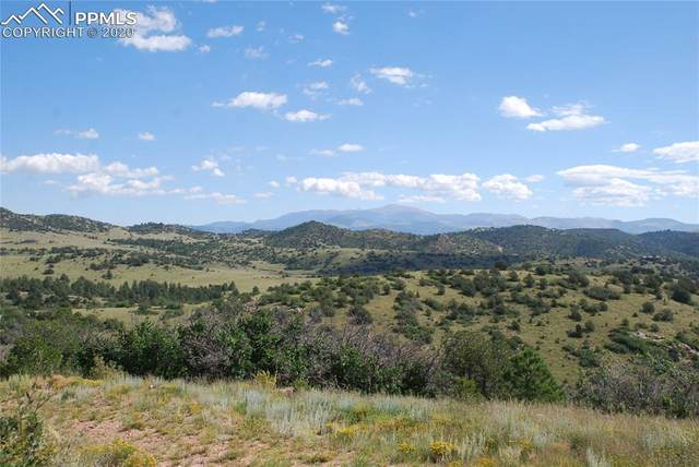 565 Cap Rock Road, Canon City, CO 81212 (#3086411) :: Action Team Realty
