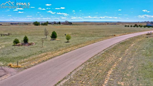 2265 Terri Lee Drive, Peyton, CO 80831 (#3086762) :: Action Team Realty