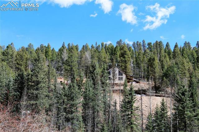 34 Snowberry Creek Road, Florissant, CO 80816 (#3087884) :: CENTURY 21 Curbow Realty