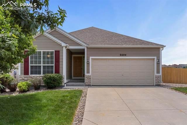 6604 Harvey Lane, Colorado Springs, CO 80923 (#3089836) :: Fisk Team, RE/MAX Properties, Inc.