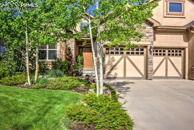 1330 Longs Point, Woodland Park, CO 80863 (#3096051) :: CC Signature Group
