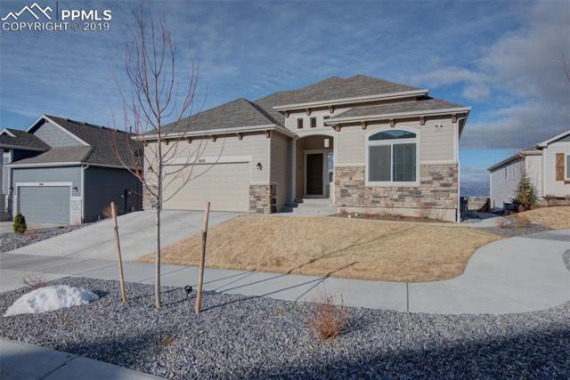 8420 Wayne Court, Colorado Springs, CO 80924 (#3097025) :: Fisk Team, RE/MAX Properties, Inc.