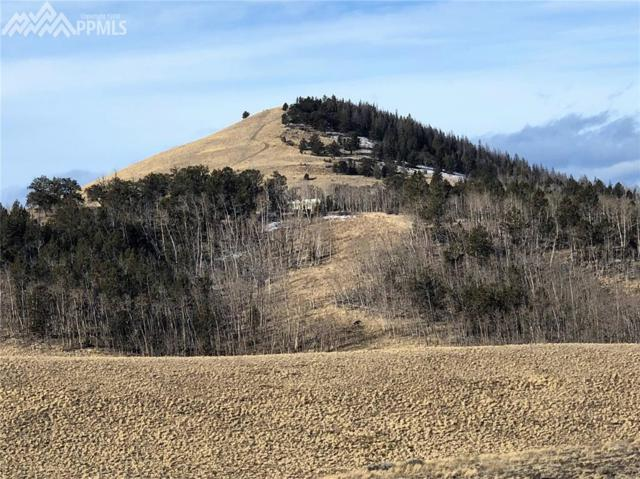 TBD Long Gulch Road, Hartsel, CO 80449 (#3097212) :: 8z Real Estate