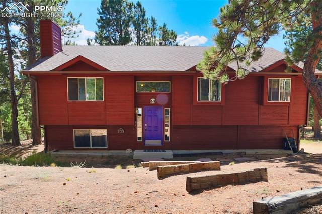 121 Aspen Drive, Woodland Park, CO 80863 (#3097960) :: Finch & Gable Real Estate Co.