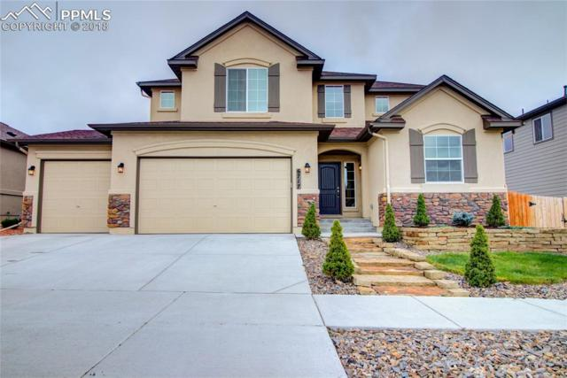 6717 Indian Feather Drive, Colorado Springs, CO 80923 (#3103393) :: CC Signature Group