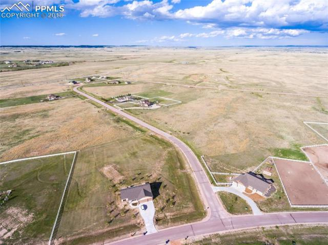 13725 Irish Hunter Trail, Elbert, CO 80106 (#3104181) :: Action Team Realty