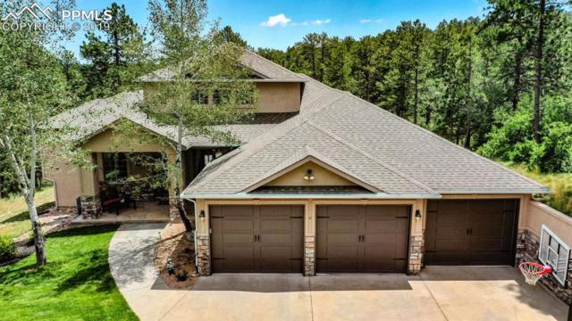 7906 Inca Road, Larkspur, CO 80118 (#3106156) :: Tommy Daly Home Team