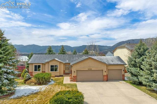 17215 Buffalo Valley Path, Monument, CO 80132 (#3109350) :: The Treasure Davis Team | eXp Realty
