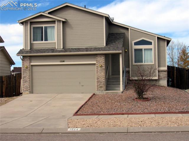 1514 Woodpark Drive, Colorado Springs, CO 80951 (#3109965) :: Venterra Real Estate LLC