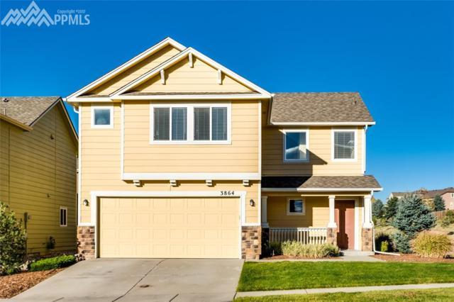 3864 Falconry Drive, Colorado Springs, CO 80922 (#3118535) :: The Treasure Davis Team