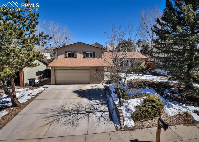 6559 E Gambol Quail Drive, Colorado Springs, CO 80918 (#3121798) :: CENTURY 21 Curbow Realty