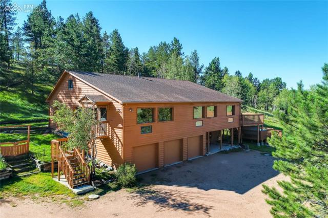 1306 Upper Twin Rocks Road, Florissant, CO 80816 (#3123665) :: Action Team Realty
