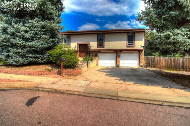 4833 Ranch Drive, Colorado Springs, CO 80918 (#3128368) :: 8z Real Estate