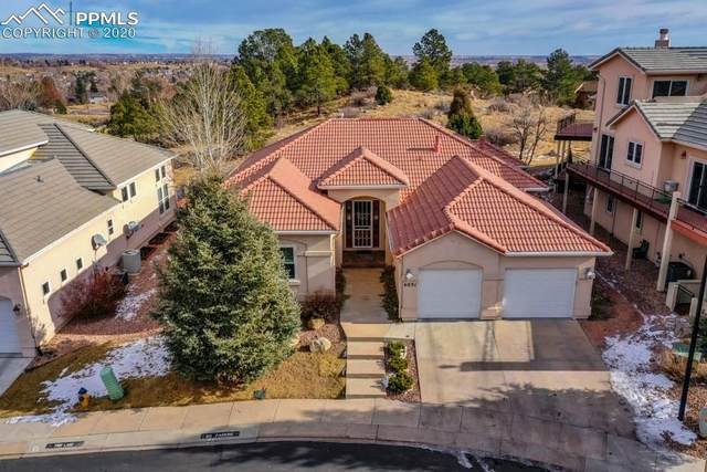 4031 San Felice Point, Colorado Springs, CO 80906 (#3128598) :: Venterra Real Estate LLC