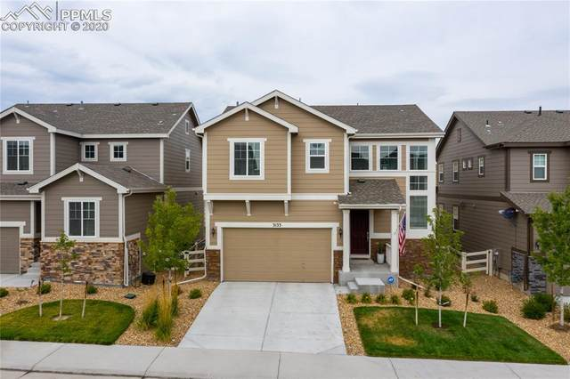 3133 Bittern Street, Castle Rock, CO 80104 (#3136609) :: 8z Real Estate