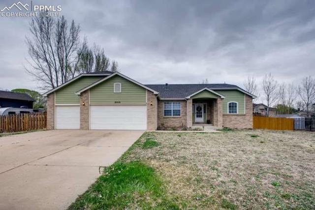6865 Weeping Willow Drive, Colorado Springs, CO 80925 (#3140824) :: Venterra Real Estate LLC