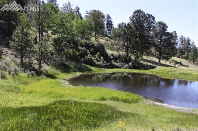 TBD Teller 1 Road, Cripple Creek, CO 80813 (#3141567) :: The Peak Properties Group