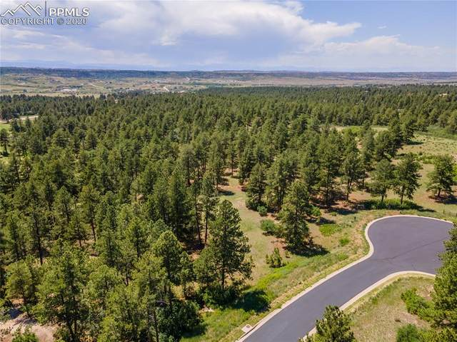 1829 Wild Timber Court, Franktown, CO 80116 (#3141814) :: CC Signature Group