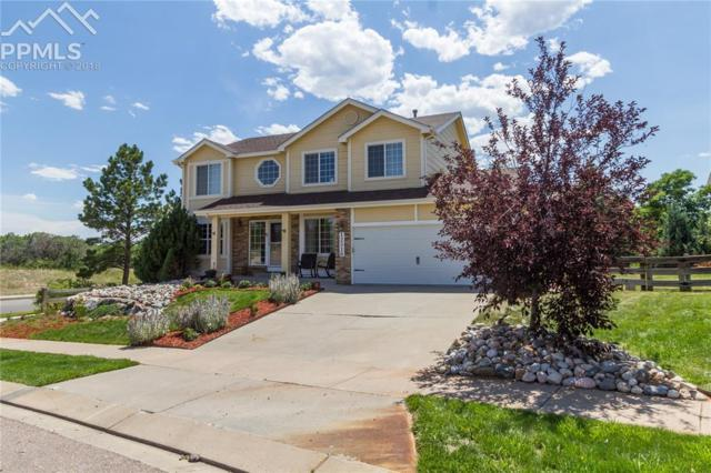 12516 Brookhill Drive, Colorado Springs, CO 80921 (#3143259) :: The Peak Properties Group