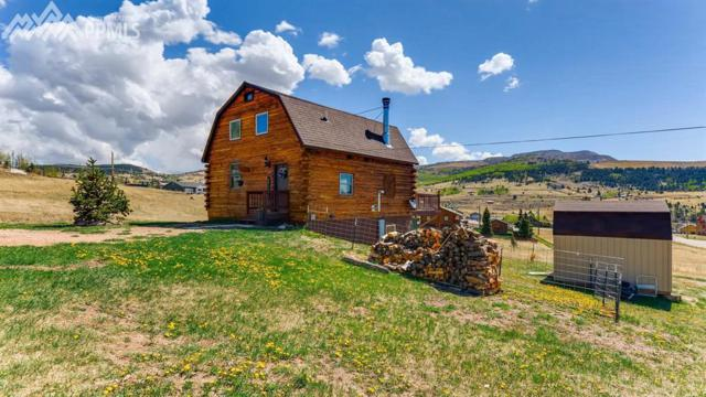226 W El Paso Avenue, Cripple Creek, CO 80813 (#3143404) :: The Peak Properties Group