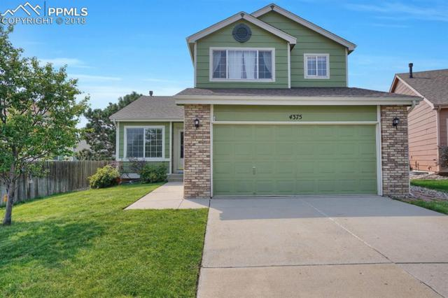 4375 Basswood Drive, Colorado Springs, CO 80920 (#3145029) :: The Hunstiger Team