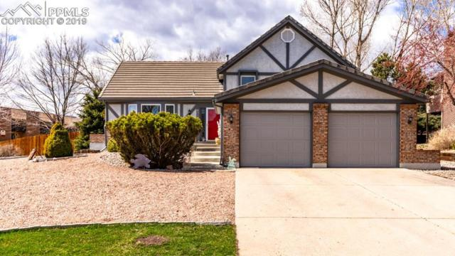 6510 Grey Eagle Lane, Colorado Springs, CO 80919 (#3145197) :: Jason Daniels & Associates at RE/MAX Millennium