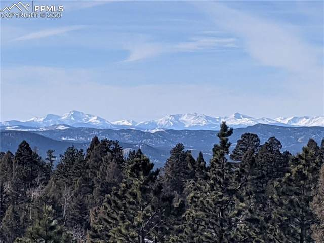 535 Mohawk Heights, Florissant, CO 80816 (#3146481) :: Action Team Realty