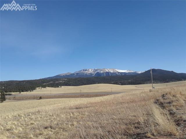 254 County 25 Road, Divide, CO 80816 (#3149494) :: Colorado Home Finder Realty