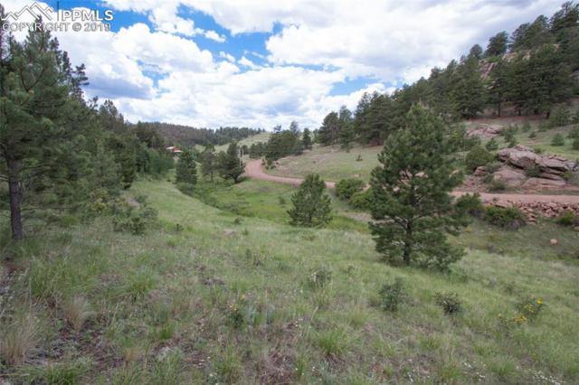 164 Penrose Circle, Cripple Creek, CO 80813 (#3155086) :: The Peak Properties Group