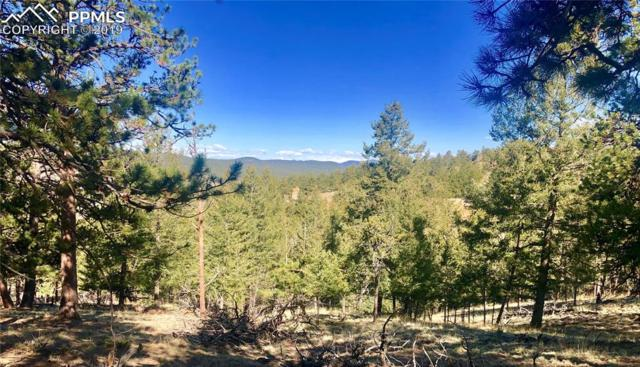 137 Gold Hill Way, Florissant, CO 80816 (#3156693) :: The Peak Properties Group